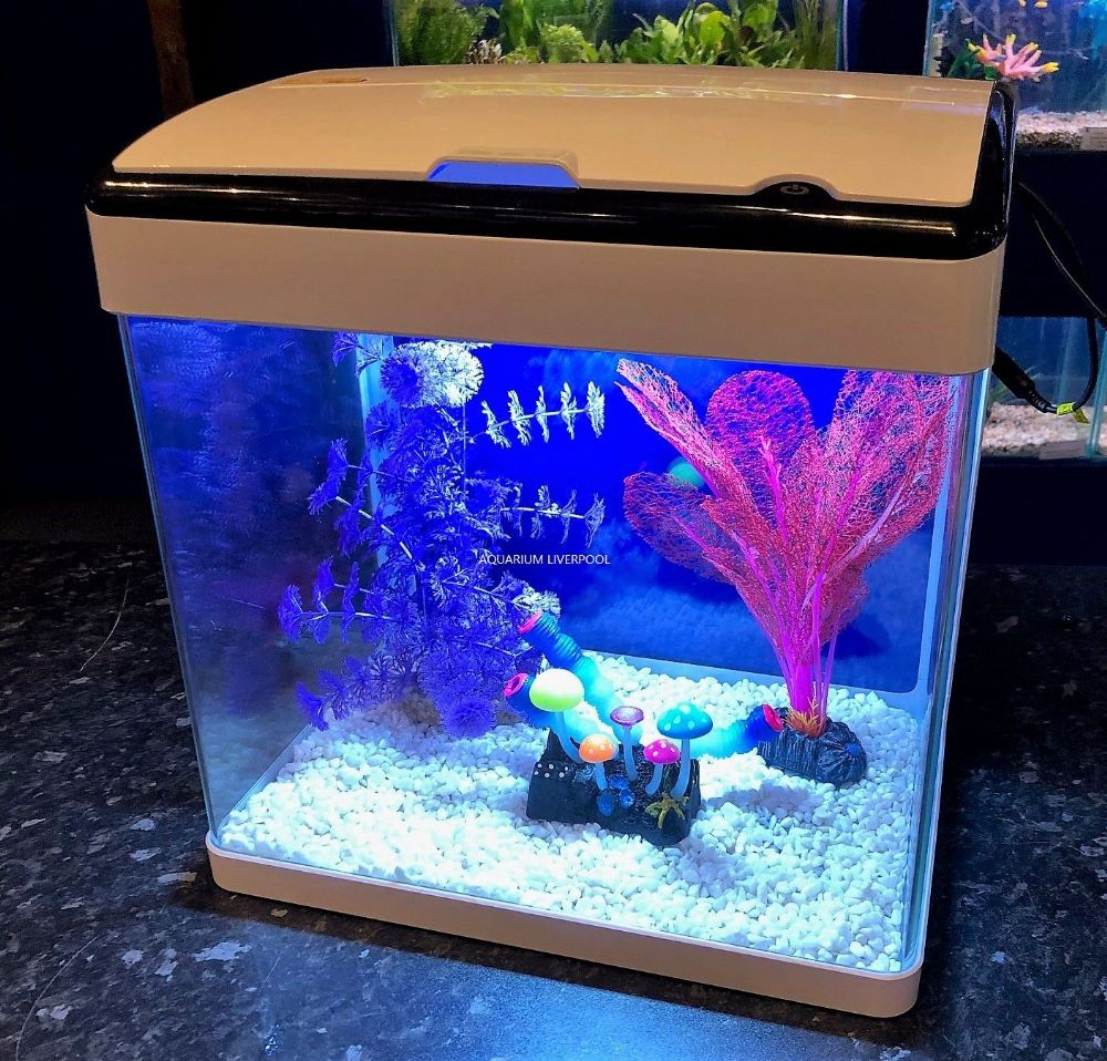 H3 WHITE Glass Aquarium with Touch LED Lights & Trickle Filter